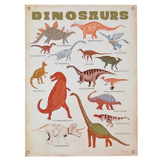 paleontology-101-banner